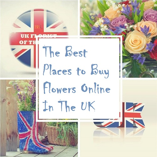 Best Places to Buy Flowers Online