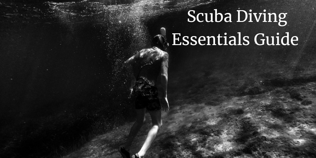 A Comprehensive Guide To Scuba Diving Essentials