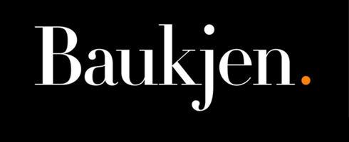 Baukjen3