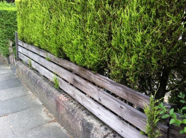 Garden Street Voucher Code