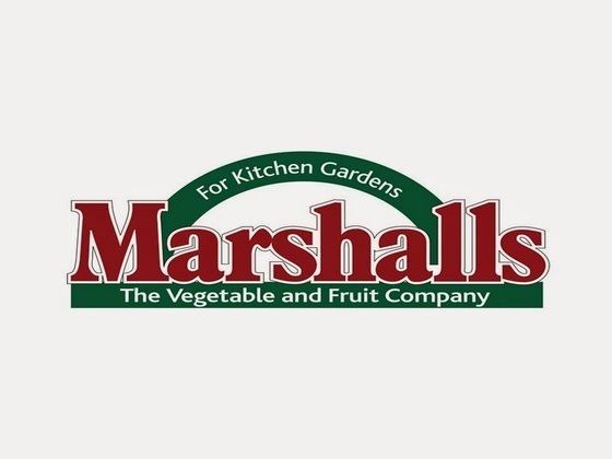 Marshalls Discount Code